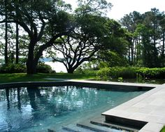 nelson byrd woltz landscape architects / tidewater residence, virginia beach (architecture: william mcdonough)