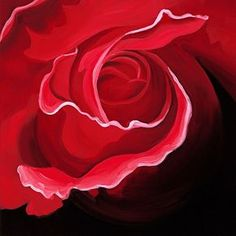 'Flamenco in Scarlet' a red rose limited edition print from an original painting by Karen Hollis