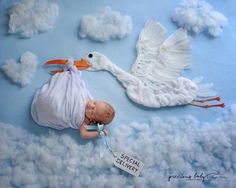 Baby newborn boy being carried by a stork with special deliver sign. flying in sky Baby ImaginArt baby scene Precious Baby Photography Angela Forker unique Fort Wayne New Haven Indiana cute adorable fun newborn Newborn Baby Photography, Newborn Photos, Baby Kalender, Baby Monat Für Monat, Monthly Baby Photos, Foto Baby, Baby Arrival, Pregnant Mom, Jolie Photo