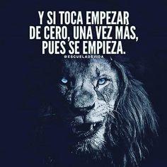 Positive Phrases, Motivational Phrases, Jiu Jitsu Frases, Lion Quotes, Magic Quotes, Quotes En Espanol, Inspirational Verses, Spanish Quotes, Success Quotes