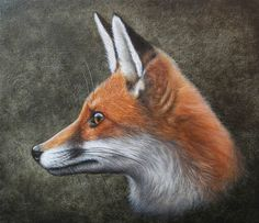 animal art,красивые картинки,Лиса,лис, лисы, лиска,Лиса арт