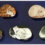 Calamite personalizzate tramite dipinto acrilico su sasso di mare. Disponibili vari soggetti (gatti, cani, pesci ed altri animali anche a richiesta).