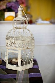 bird cage ha :-)