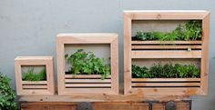 Small, medium and large Garden Wall Planters by Plantography