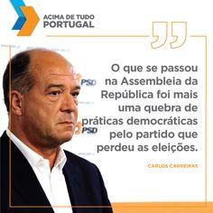 Carlos Carreiras em conferência de imprensa #PSD