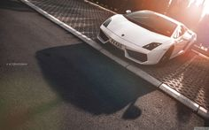 (by Ni. Point Blank, Xbox One, Lamborghini, Balenciaga, Automobile, Photography, Motors, Sunshine, Cars