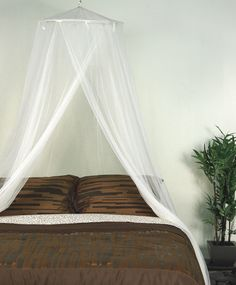 Mosquito Net Canopy in Ivory from Overstock.com for the schoolroom reading nook.