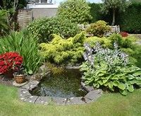 Small Yard Ponds - Bing Images
