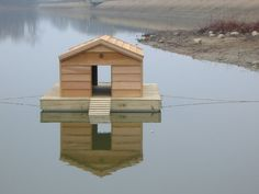 Do you want to build a duck house or coop for your new ducks? Here are 37 of the best free DIY duck house plans we& collected from all over the net. Duck House Plans, Wood Duck House, Farmer Duck, Goose House, Duck Island, Backyard Ducks, Duck Coop, Quail Coop, Insulated Dog House