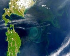 The swirling mass of plastic soup in the Pacific Ocean, known by a handful of names -- the Great Pacific Garbage Patch, North Pacific Gyre, ...