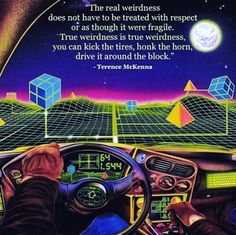Holographic Universe, Terence Mckenna, Free Your Mind, Something In The Way, Astral Projection, Special Words, Mind Over Matter, Intelligent Design, Spiritual Guidance