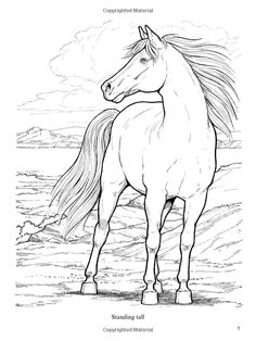 286 Best January 2017 Ideas Images Coloring Books Coloring Pages