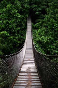 fav landscape f uploaded canada vertical British Columbia 500px Capilano Suspension Bridge