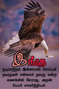 Tamil Motivational Quotes, Language Quotes, Good Thoughts Quotes, Good Morning Quotes, Picture Quotes, Bald Eagle, Poems, Life Quotes, Facts