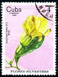 flowers on postage stamps - Google Search