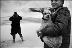 """FRANCE. Aquitaine region. Dune of Pyla.  Shooting of the movie """"La part de l'autre"""", by Jeanne LABRUNE."""