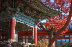 Autumn at Gilsangsa in Seoul - null