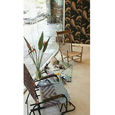 🐕🐈🌿🌻#salon#athens Athens, Salons, Spaces, Rugs, Home Decor, Homemade Home Decor, Lounges, Types Of Rugs, Rug