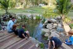 Swimming Pool Pond, Pond Landscaping, Australia Photos, Water Features, Native Gardens, Landscape, Nature, Projects, Water Sources