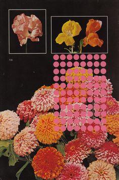 """Flowers"" by Randy Grskovic. Tumblr, Design Art, Graphic Design, Travel Design, Wedding Art, Texture Art, Sculpture, Art Inspo, Illustrations Posters"