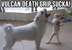 Vulcan Death Grip!