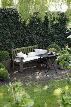 Bankje op kleiner terras. Klinkers, gras, potten. Maar niet die buxussen.....