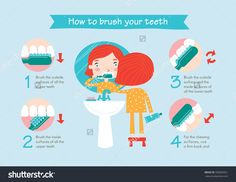 Instructions On How To Brush Your Teeth For Kids. Easy Learn How To Brush Teeth For Children. Vector Illustration. - 336830351 : Shutterstock