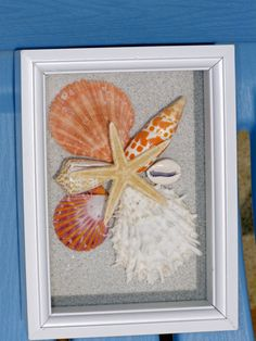 SEASHELL DESIGN SHADOWBOX in Hot Orange starfish by justbeachynow