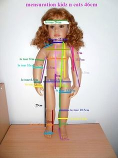Kidz n' Cats doll measurements