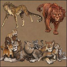 Big Cats Art, Furry Art, Cat Art, Creature Concept Art, Creature Design, Animal Sketches, Animal Drawings, Bastet, Tiger Art