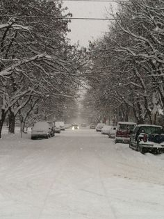 Missoula Montana on 1/18/12. I miss this so much.