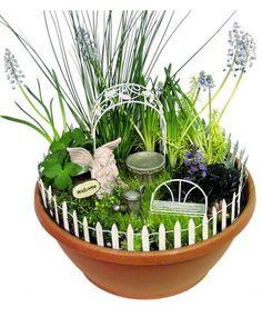 Fairy Miniature Garden Kit