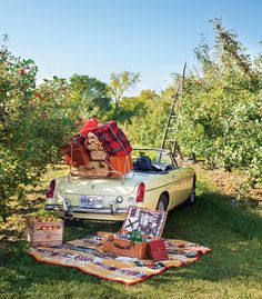 Take a road trip picnic in style with products from @martinpatrick3, J.W. Hulme, and more. Photo by TJ Turner