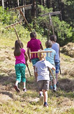 Mithelfen bei der Heuernte // Assist in the harvesting of hay Adventure
