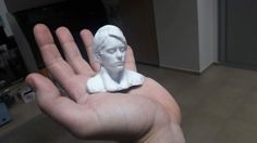 ProDe performed: 3D scanning of a person and printning the model