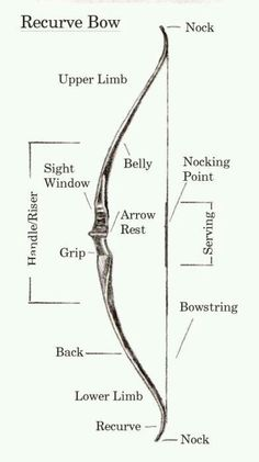 Love my Recurve bow! Recurve bow (reference and terminology) I'm not pinning this because of Katniss. I like archery, okay?