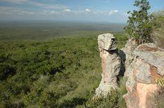 Reserva Biológica de Serra Negra. Caatinga