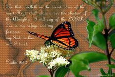 Butterfly on flowers with scripture  Psalm 91: 1He that dwelleth in the secret place of the most High shall abide under the shadow of the Almighty.  2I will say of the LORD, He is my refuge and my fortress: my God; in him will I trust.