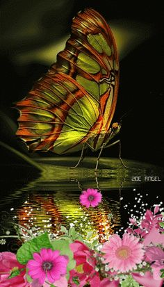 Flap your wings my beautiful butterfly Beautiful Bugs, Beautiful Butterflies, Beautiful World, Papillon Butterfly, Butterfly Kisses, Butterfly Wings, Mariposa Butterfly, Madame Butterfly, Beautiful Creatures