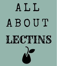 Why You Should Stop Eating Plant Lectins (Or At Least Reduce Them) Lectin Free Foods, Lectin Free Diet, Bone Health, Gut Health, Thyroid Health, Health Foods, Healthy Balanced Diet, Healthy Nutrition, Healthy Eating