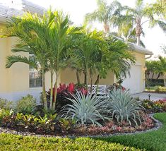 816 Best Tropical Landscaping Ideas Images In 2020 Tropical