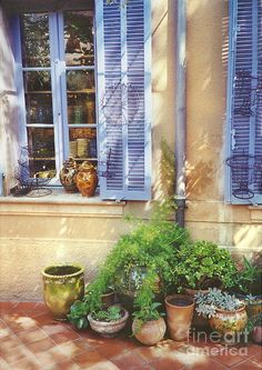 Provence styles