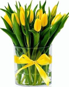 """If you search for """"large flower arrangements"""" with Yahoo! Search [image], you will surely find the answer you want. Yellow Tulips, Tulips Flowers, Pretty Flowers, Fresh Flowers, Spring Flowers, Planting Flowers, Bouquet Flowers, Glass Flowers, Art Flowers"""