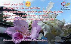 Sonrío y soy feliz, no porque mi vida sea perfecta, sino porque aprecio mucho lo que Dios me ha dado