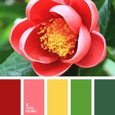 алый, желтый, зеленый, красный, насыщенный зеленый, оттенки зеленого, подбор цвета в интерьере, салатовый, тёмно-зелёный, цвет мака, цвет мякоти грейпфрута, яркий желтый.