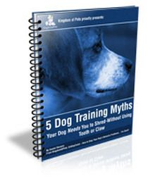 Dynamic critiqued dog nutrition and training find out this here Aussie Shepherd, Australian Shepherd Dogs, Dog Whisperer, Dog Nutrition, Herding Dogs, Dog Activities, Dog Barking, Dog Behavior, Dog Pictures
