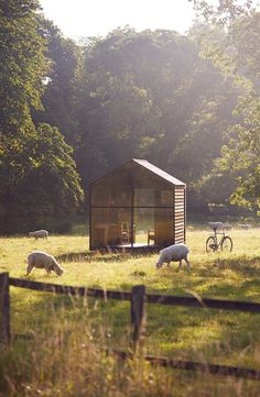Nathalie de Leval | Work | Paul's Shed with Paul Smith