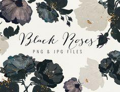 Black Roses by Webvilla on Creative Market keywords: floral rose graphic design botanical calligraphy