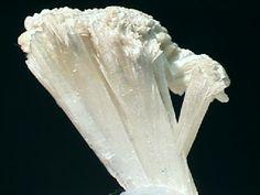 http://www.galleries.com/minerals/silicate/pectolit/pectolit.jpg