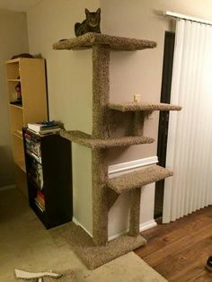 Cats Toys Ideas - I built a cat tower that fits on a corner - Ideal toys for small cats Cat Tower Plans, Diy Cat Tree, Cat Towers, Ideal Toys, Cat Shelves, Cat Playground, Cat Room, Cat Condo, Pet Furniture
